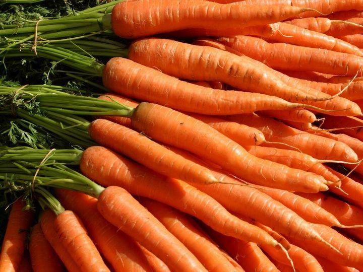 5 Простых способов вырастить гладкую, ровную и красивую морковку 5
