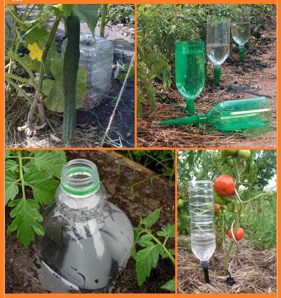 Как можно использовать на даче пластиковые бутылки? 10
