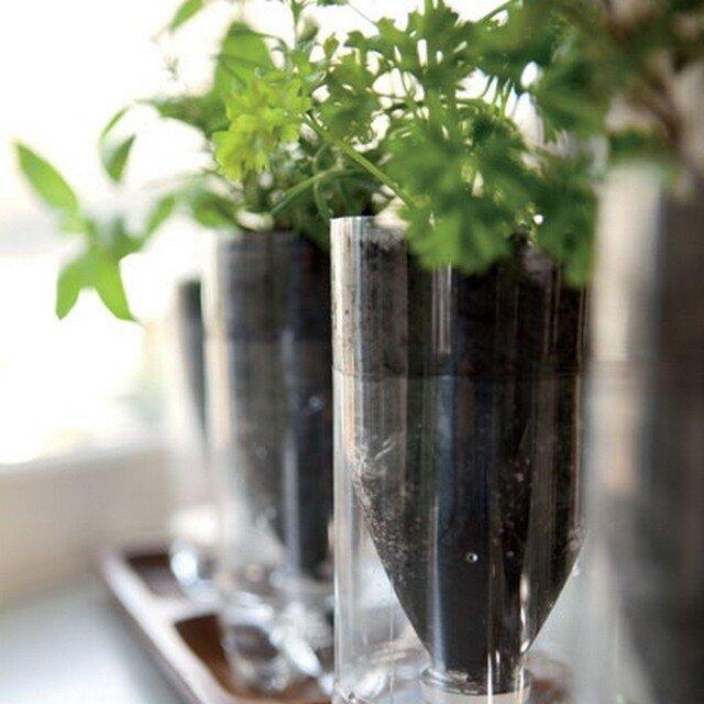 Как можно использовать на даче пластиковые бутылки? 4