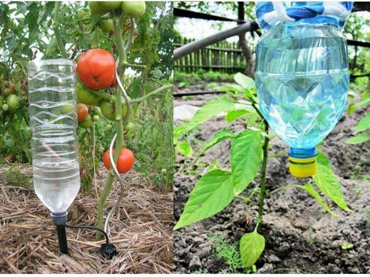 Как можно использовать на даче пластиковые бутылки? 8