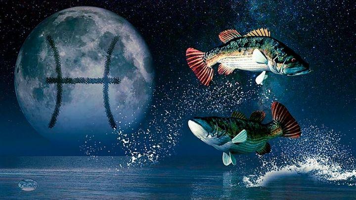 Каковы в любви рыбы 1