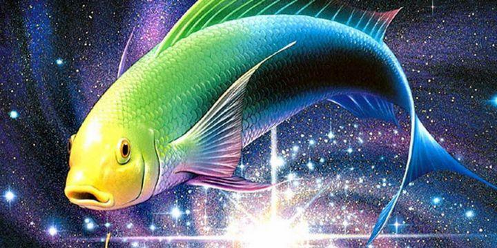 Каковы в любви рыбы 3