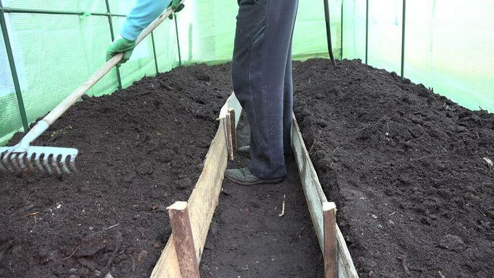 Легкий способ подготовить почву в теплице к посеву ранней весной 1