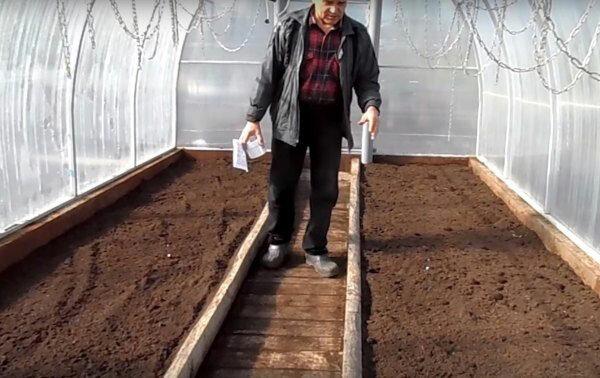 Легкий способ подготовить почву в теплице к посеву ранней весной 2