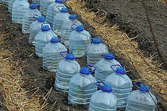 Не стоит выкидывать пластиковые бутылки - пригодятся на даче! 5