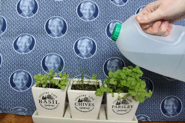 Не стоит выкидывать пластиковые бутылки - пригодятся на даче! 10