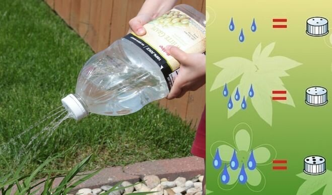 Не стоит выкидывать пластиковые бутылки - пригодятся на даче! 9