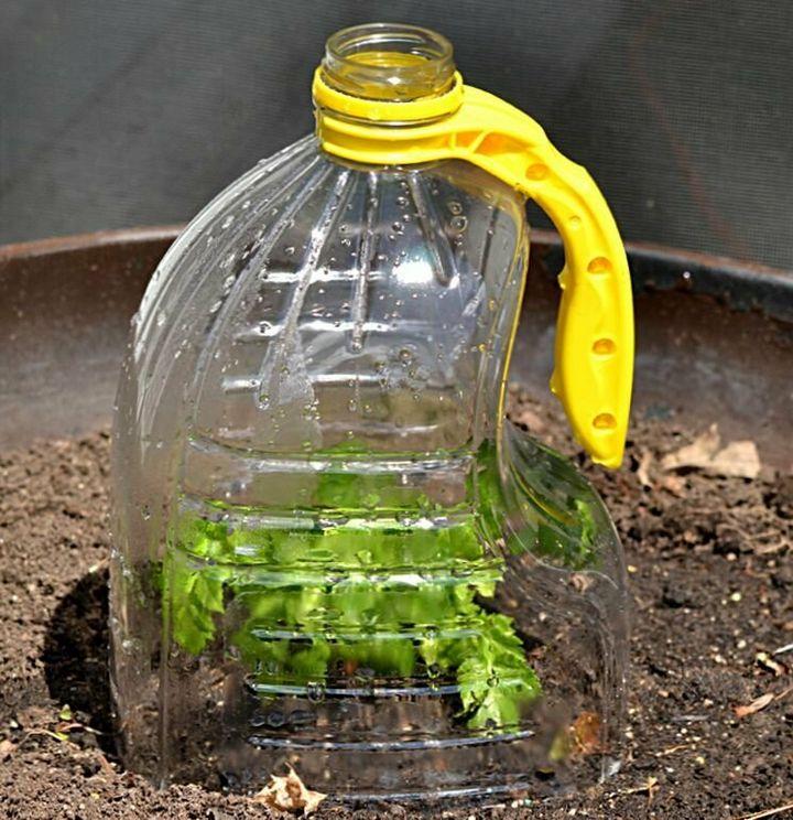 Польза от пластиковых бутылок на даче 2