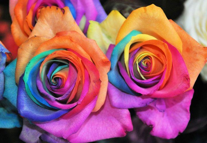 Самые дорогие и редкие цветы в мире 14