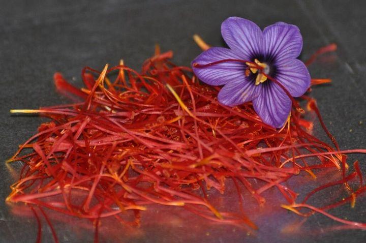 Самые дорогие и редкие цветы в мире 26