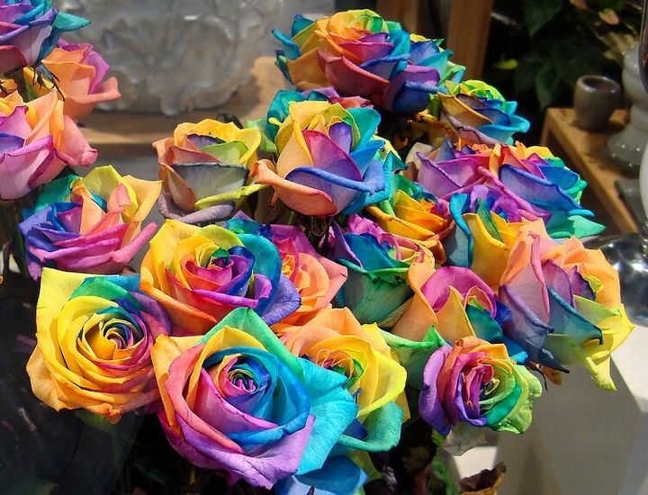 Самые дорогие и редкие цветы в мире 1