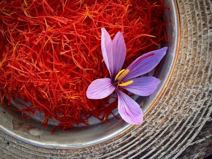 Самые дорогие и редкие цветы в мире 27