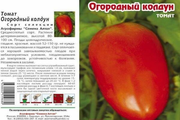 Устойчивые сорта томатов, не требующие большого ухода 1