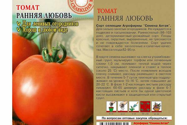 Устойчивые сорта томатов, не требующие большого ухода 3