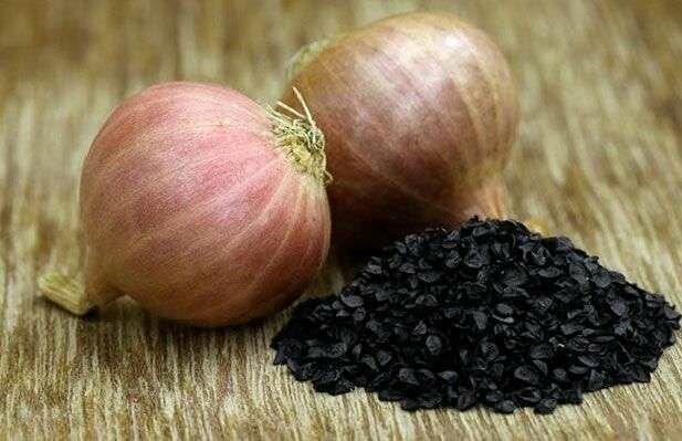 Выращиваем из семян «чернушки» крупный лук за один сезон 1